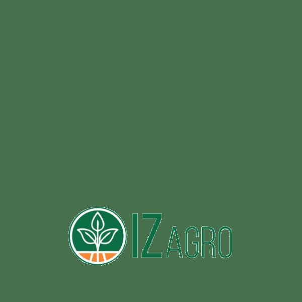 Startup IZ Agro - Logo Colorido