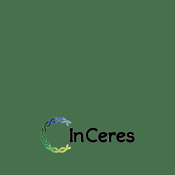 Startup Inceres - Logo Colorido