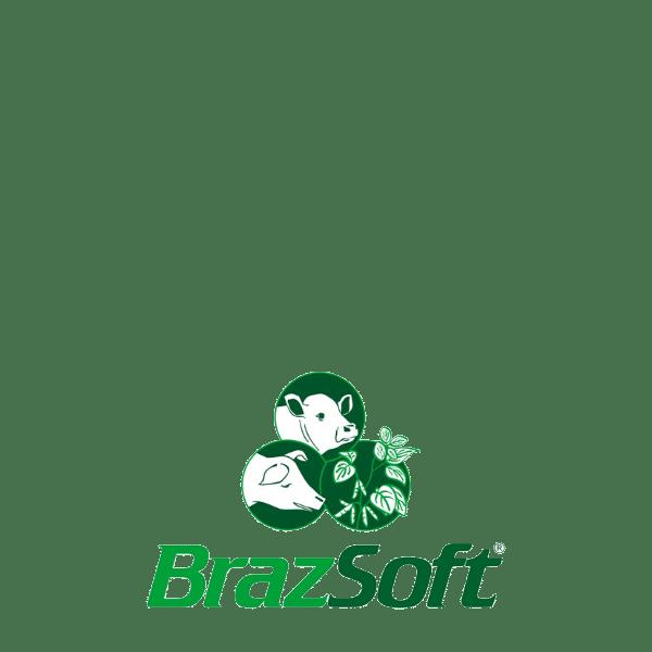Startup BrazSoft - Logo Colorido