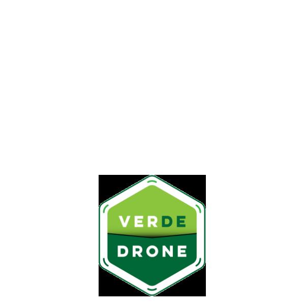 Startup Verde Drone - Logo Colorido